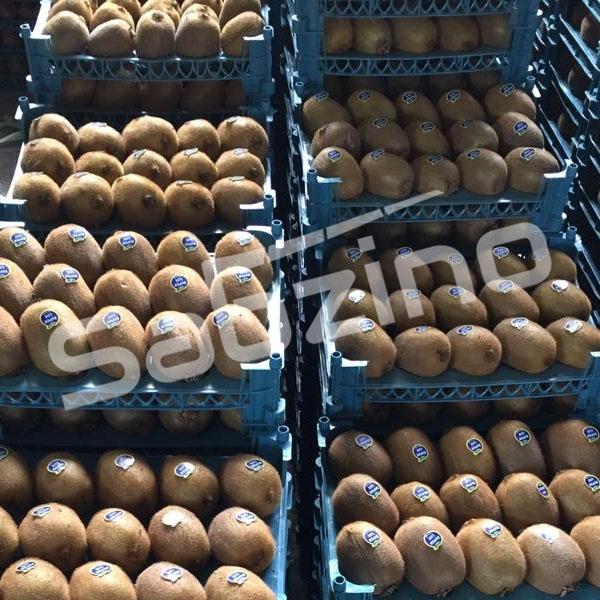 خرید و فروش و قیمت کیوی صادراتی آستارا