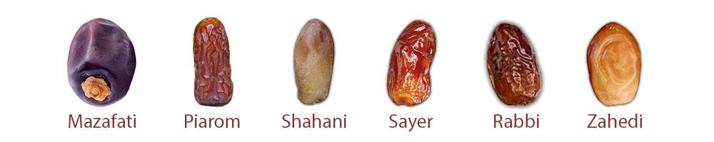 انواع خرمای صادراتی ایران