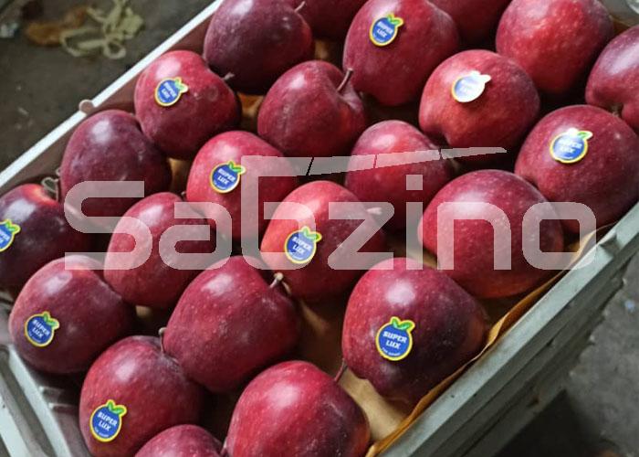 شرایط صادرات سیب درختی