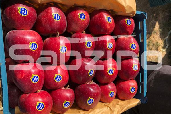 قیمت سیب درختی