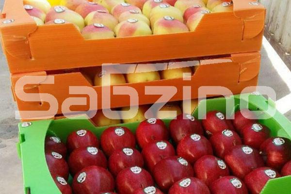 صادرات سیب درختی