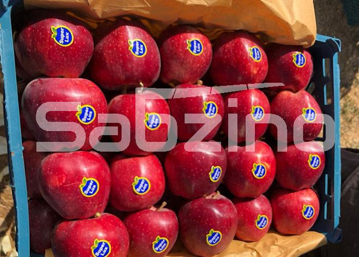 سیب درختی مرغوب