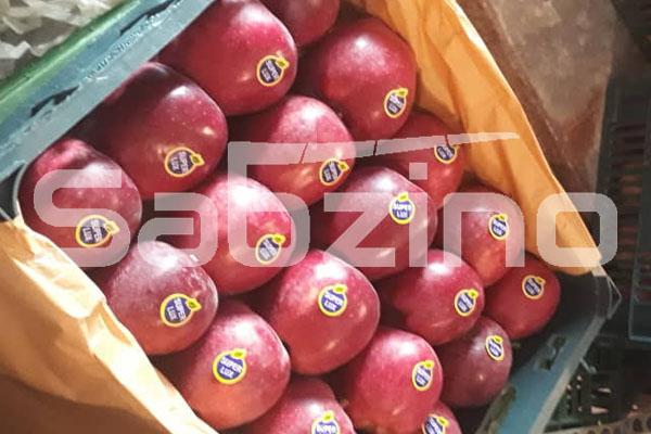 سیب درختی سالم