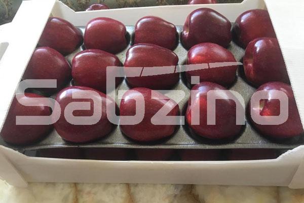 تولید سیب درختی
