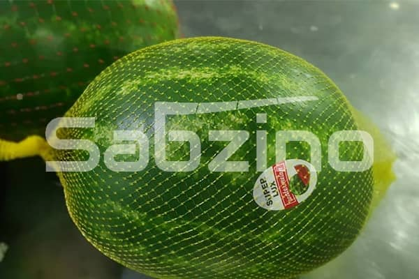صادرات هندوانه به روسیه