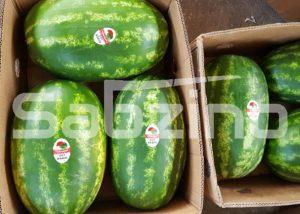 صادرات هندوانه به عراق